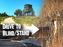 How To Get To Your Stand Without Getting Busted