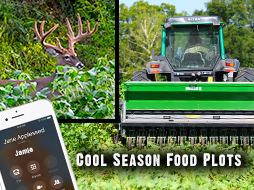 Fall Food Plots and Their Hunting Strategies