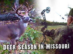 Bow Hunting: Most Hunting Shows Would Not Share This Hunt
