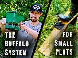 Plant a Small Food Plot with Hand Tools!