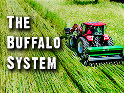 Better Food Plots: Breaking Down the Benefits of the Buffalo System