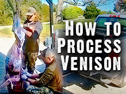 How to Process Vension