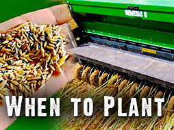 When to Plant Fall Food Plots? Get Ready for Deer Season!
