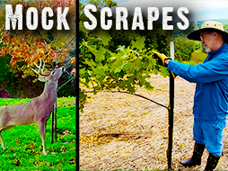 Easy, Step by Step Guide to Make Mock Scrapes