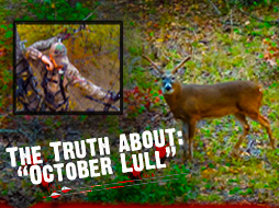 The Truth about the October Lull