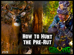 Tips for Hunting the Pre-Rut