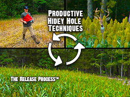 Attract Deer: An Easy, Low Maintenance, Small Food Plot