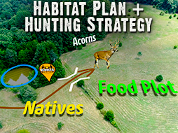 Better Hunting for 2 Properties, 30 Acres & 120 Acres