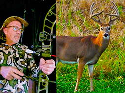 Best Food Sources to Hunt In the Early Season